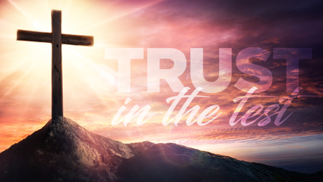 TPH_Trust_Blog
